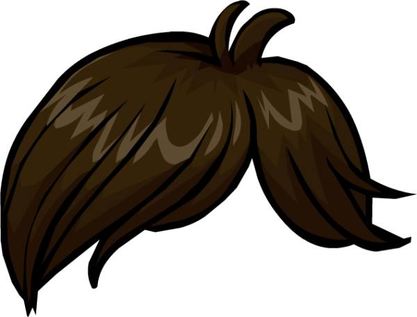 Hair170