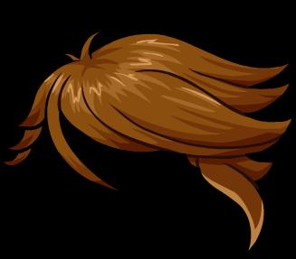 Hair26